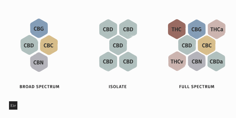 Olej CBD full spectrum vs izolat CBD