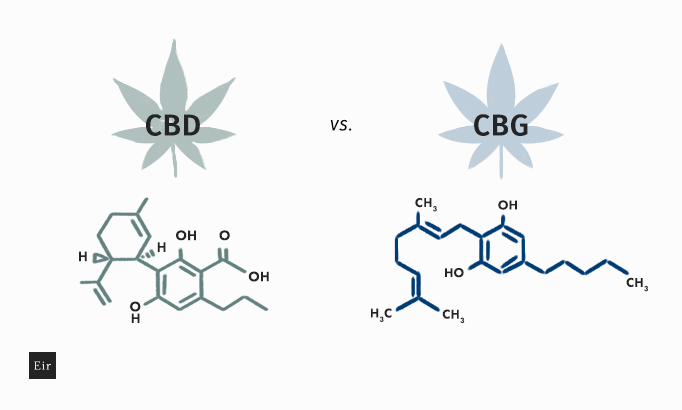 The difference between CBN and CBD