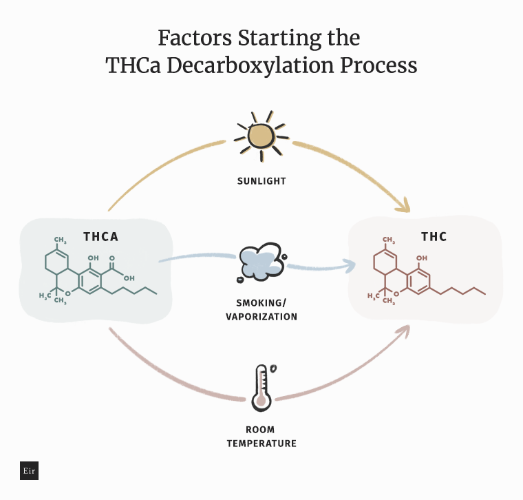 Factors starting the THCa decarboxlylation process