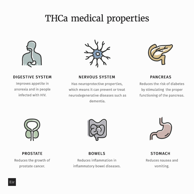 Health benefits of taking THCa for each body system