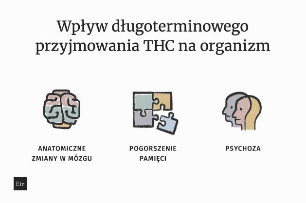 Wpływ długoterminowego przyjmowania THC na organizm