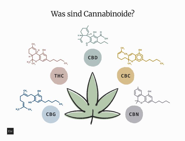 Was sind Cannabinoide: CBG, THC, CBD, CBC, CBN